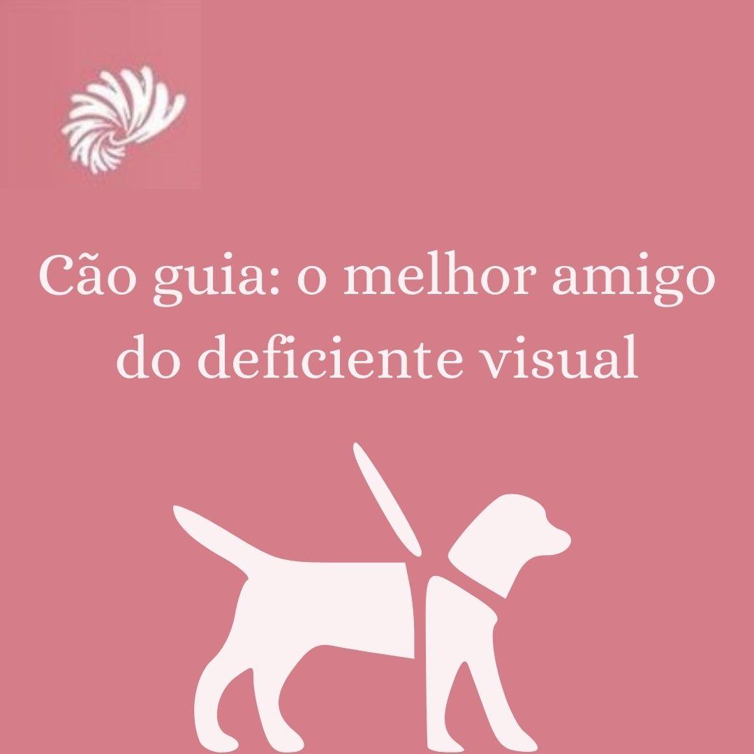 Cão-guia: o melhor amigo do deficiente visual